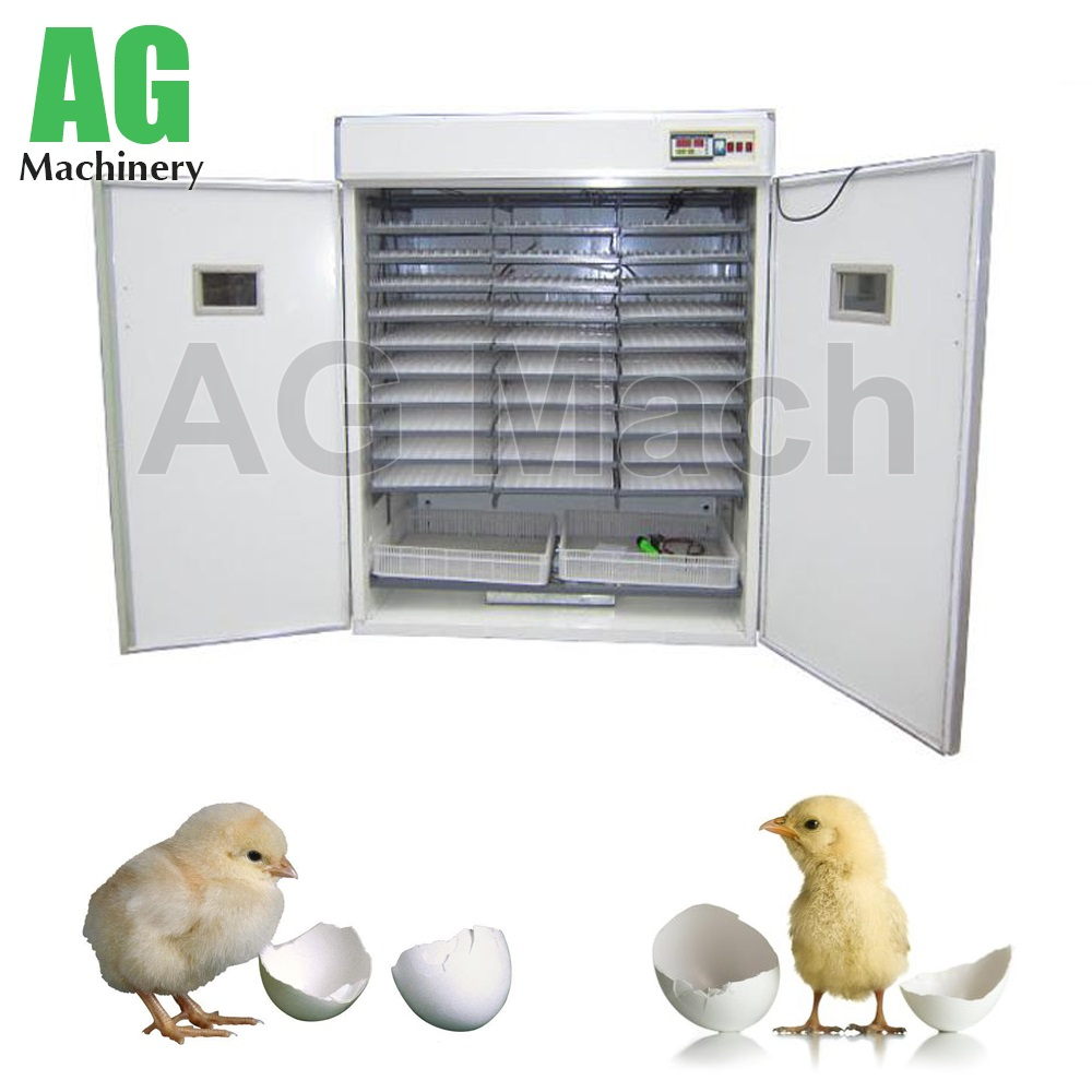 98% Hatching Rate Small Digital Chicken Incubator Solar Egg Incubator
